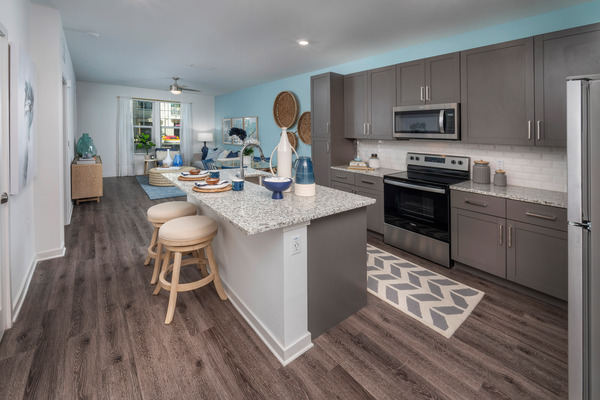 CBG builds The Rosery, a 224-Unit Luxury Apartment Community Across Four Buildings in Largo, FL - Image #4