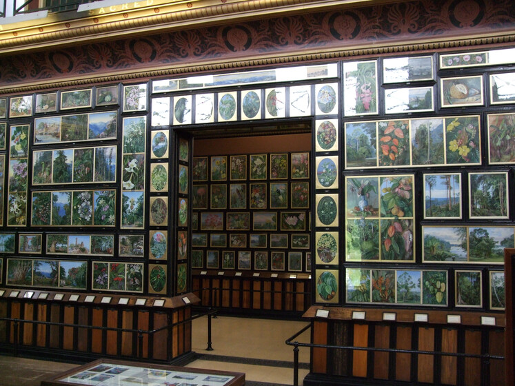 Marianne North Gallery slider image