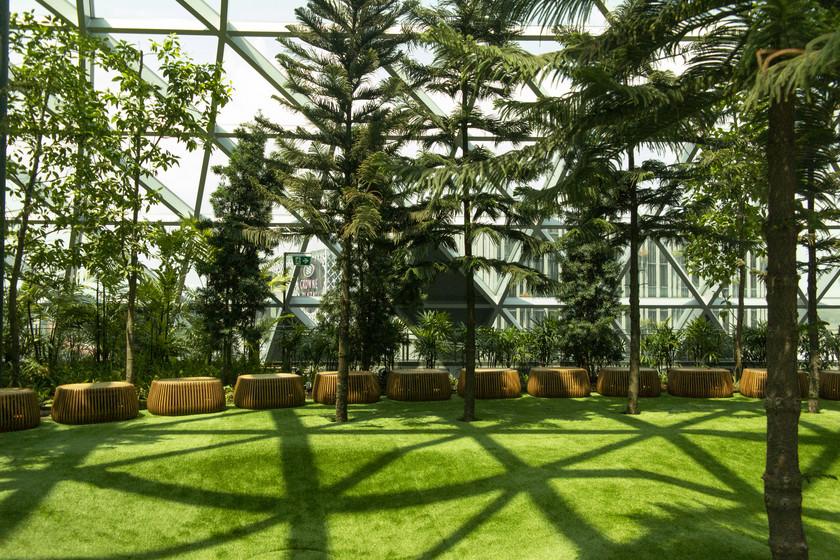 Level 5 garden
