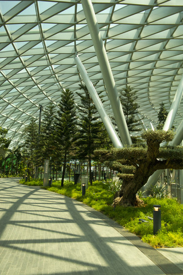 Jewel Changi Airport slider image